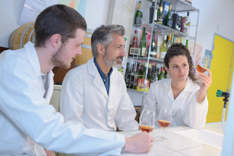 Professional team working with quality tests at wine manufactory stock photo