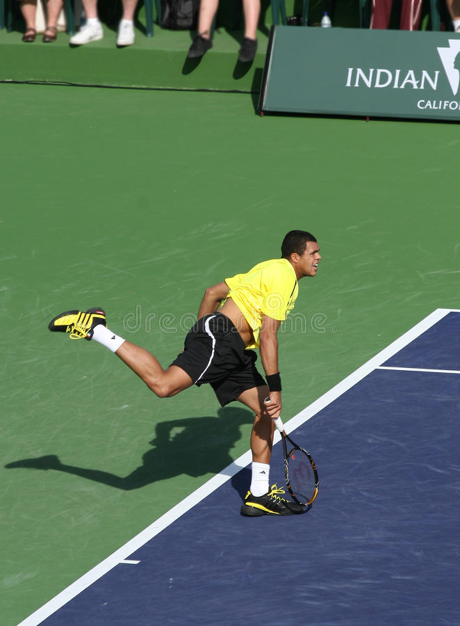 Professional Tennis Player. royalty free stock photo