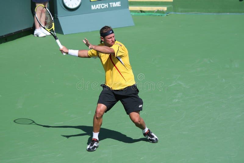 Professional Tennis Player - David Nalbandian stock photos