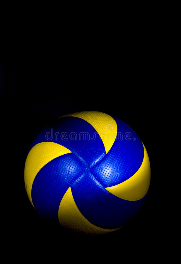 Download Professional volleyball stock photo. Image of games, sport - 7869014