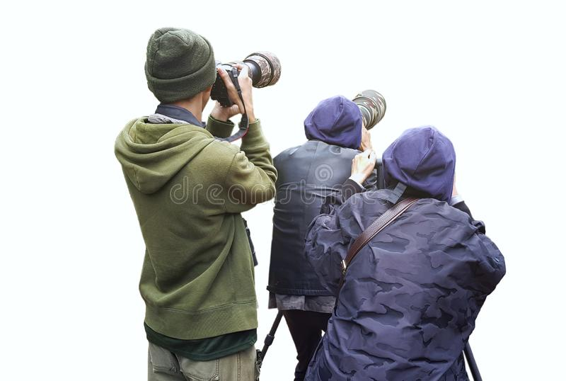 Professional wildlife photographer on white background ,Photographer takes a picture with professional camera, Nature photographer.  stock images