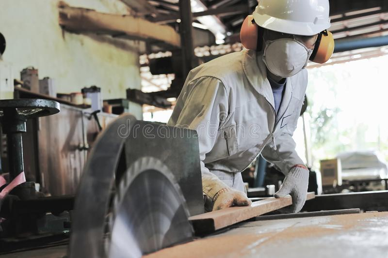 Professional young carpenter with safety equipment cutting a piece of wood on table saw machine in carpentry factory. Professional young carpenter with safety stock photo