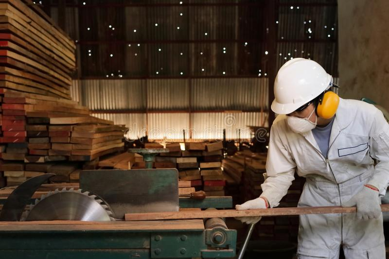 Professional young worker in white uniform and safety equipment cutting a piece of wood on table saw machine in carpentry factory. stock photo