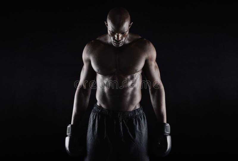 Professionele Afrikaanse bokser stock afbeeldingen