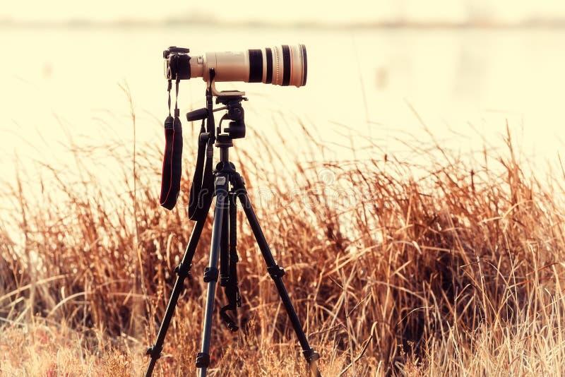 Professionele camera met telelens op een driepoot royalty-vrije stock fotografie