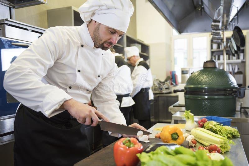 Professionele chef-kok op het werk royalty-vrije stock fotografie