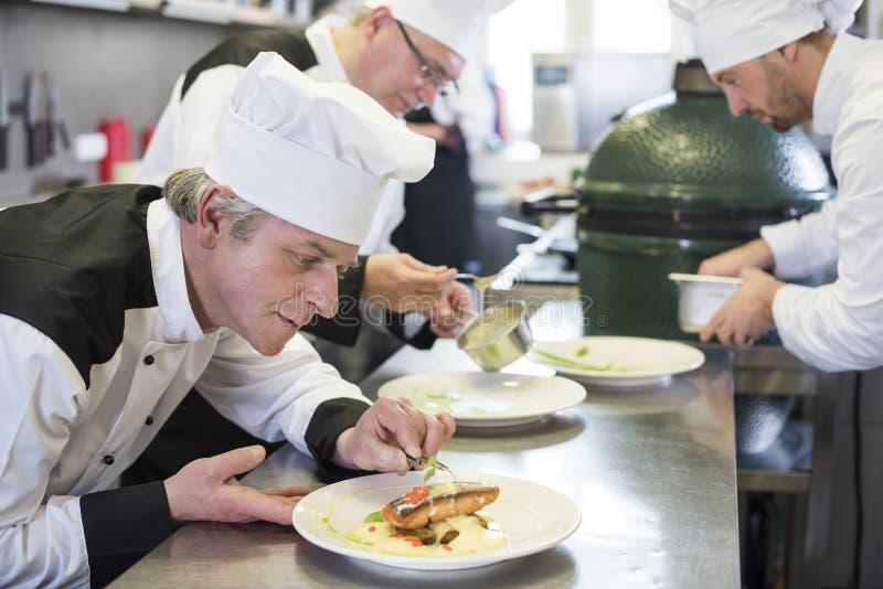 Professionele chef-kok op het werk royalty-vrije stock foto