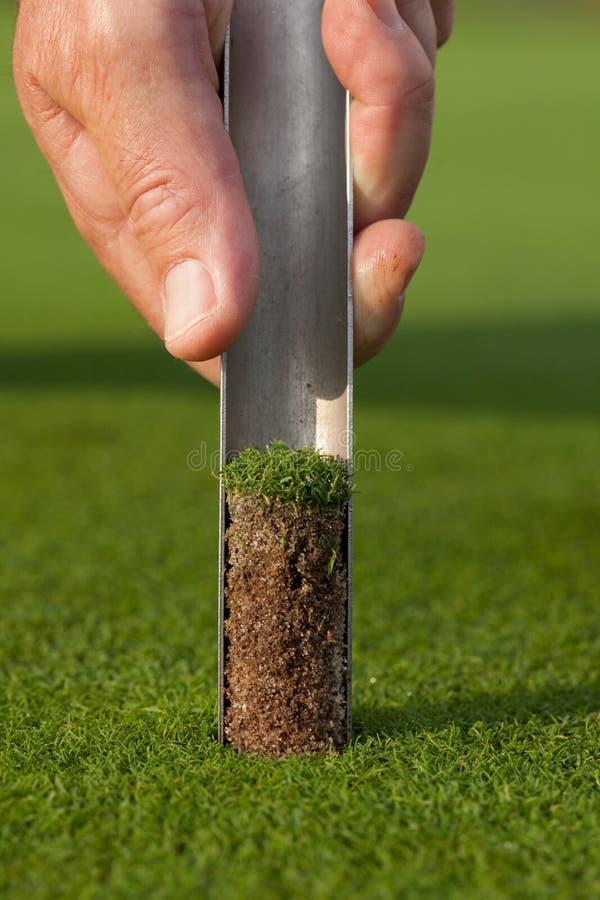 Professionele golfclubs in een leerbagage bij zonsondergang stock afbeelding