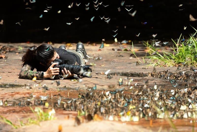 Professionele vrouwenfotograaf die vlinder in de groene aard van het wildernisregenwoud nemen royalty-vrije stock fotografie