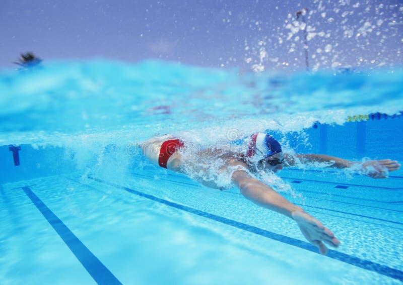 Professionelle männliche Athletenschwimmen im Pool lizenzfreie stockbilder
