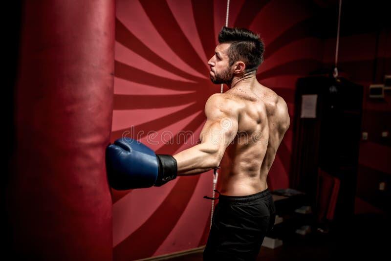 Professioneller männlicher Boxerfighting und -training in der Turnhalle Starkes, muskulöses Manntraining und Verpacken lizenzfreie stockbilder