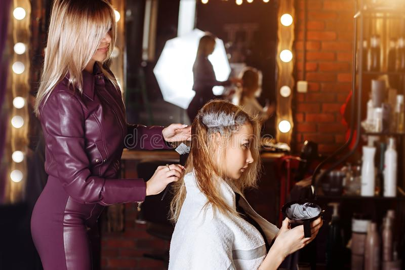 Professioneller weiblicher Friseur, der Farbe am weiblichen Kunden am Friseursalon anwendet Frisurndienstleistungen, Haarwiederhe stockbilder