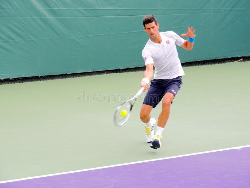 Professionista di tennis di ATP di Novak Djokovic dalla Serbia fotografie stock