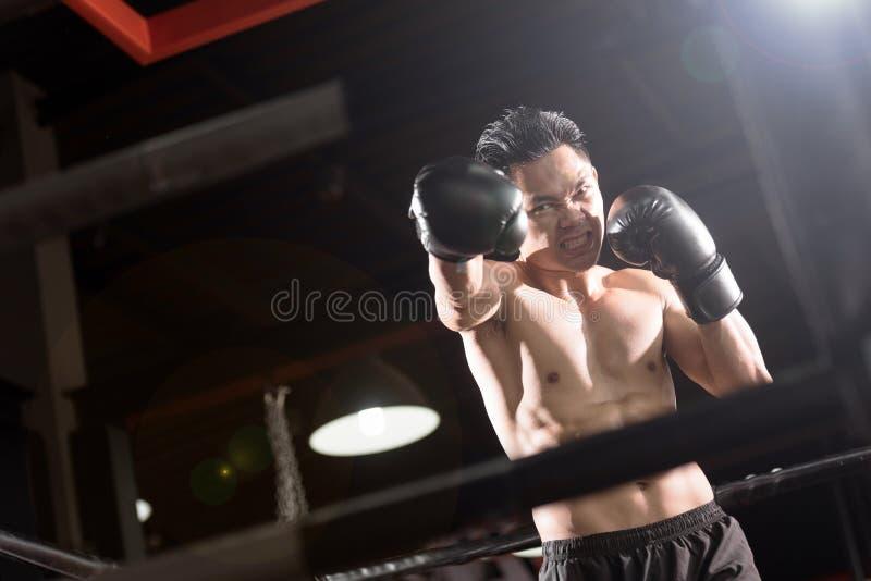 Professionlbokser het vechten op de ring royalty-vrije stock foto