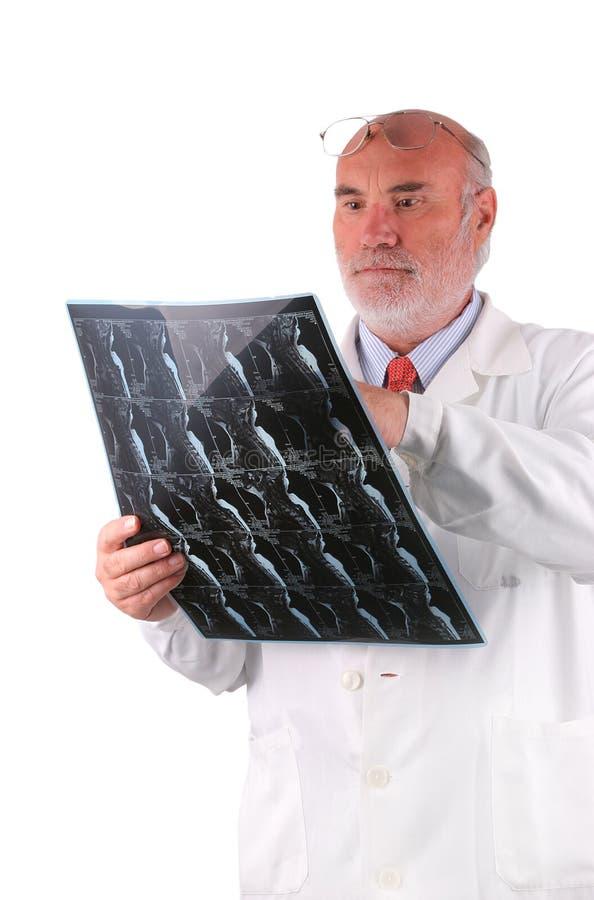 Professor com imagem do raio X fotografia de stock royalty free