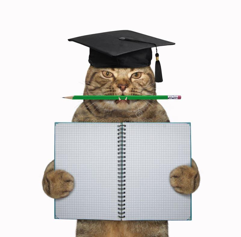 Professor do gato com lápis e caderno fotos de stock