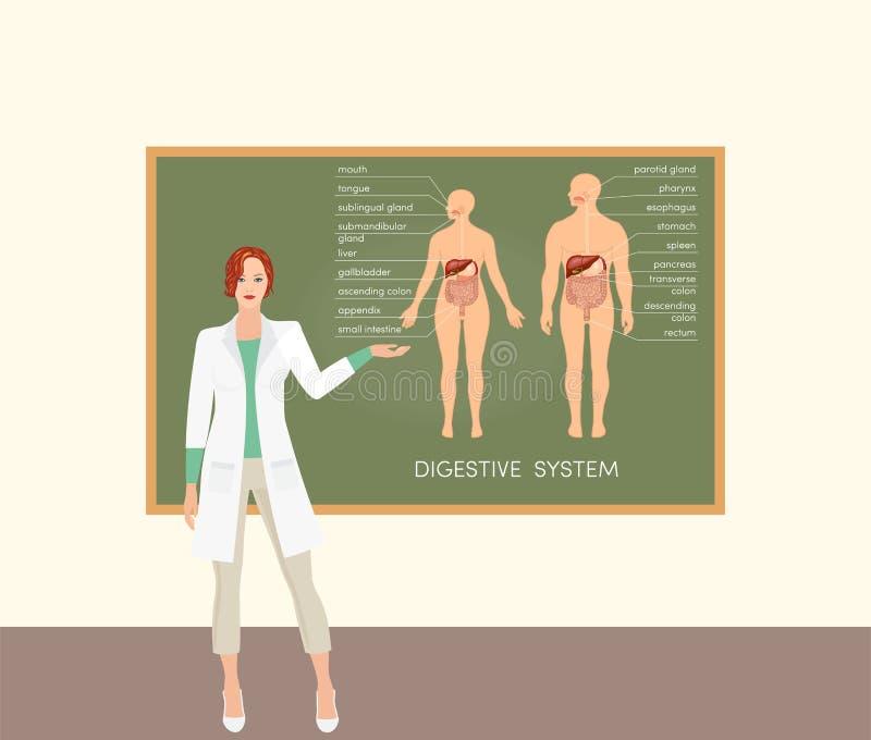 Professor fêmea do doutor ilustração royalty free