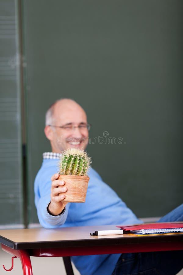 Professor Showing Cactus Plant på skrivbordet royaltyfri foto