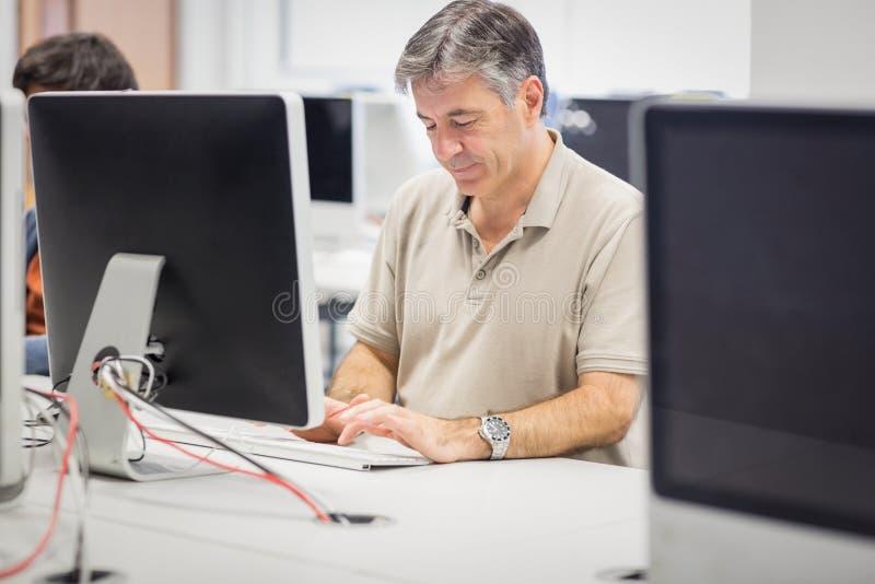 Professor som arbetar på datoren arkivbilder
