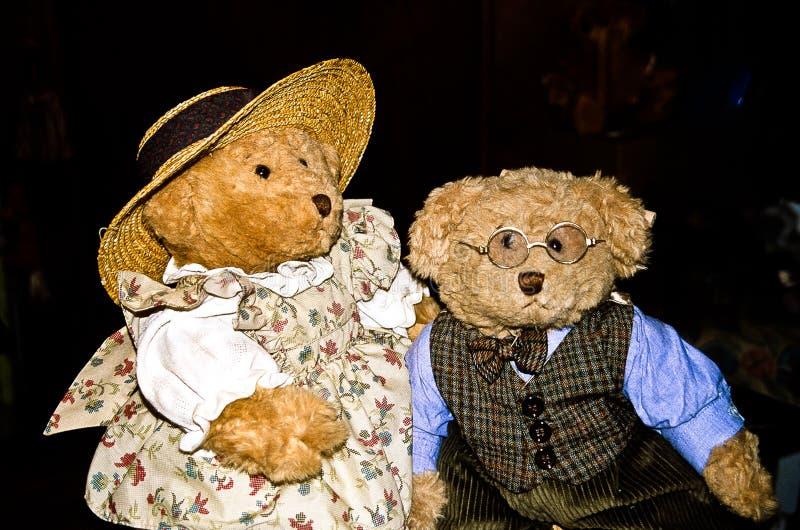 Professorn och hans fru - ett par av nallebjörnar fotografering för bildbyråer