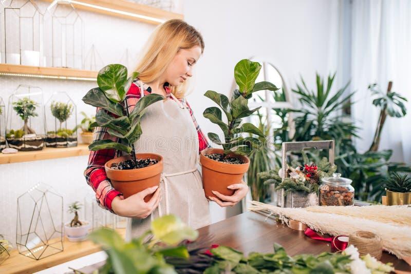 Profi-Floristinnen am Arbeitsplatz lizenzfreie stockfotografie