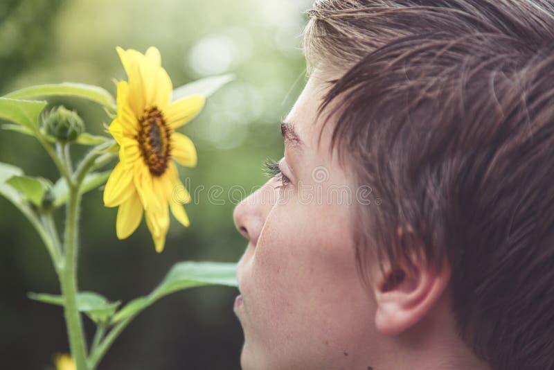 Profiel van een jonge mens die een zonnebloem bekijken royalty-vrije stock fotografie