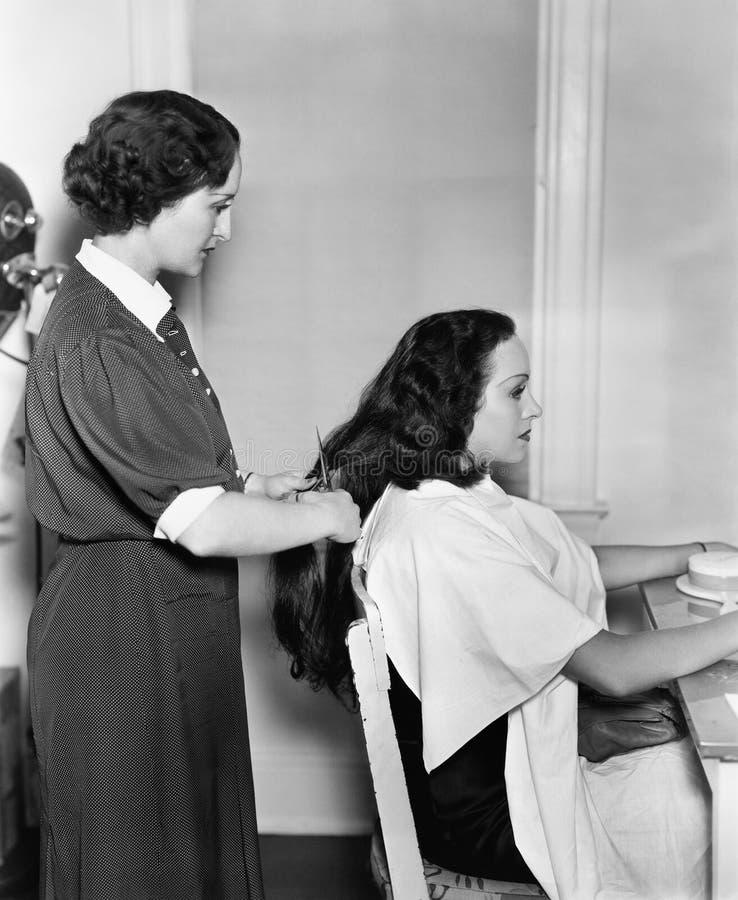 Profiel van een vrouwelijke kapper het snijden het haar van een jonge vrouw (Alle afgeschilderde personen leven niet langer en ge stock foto's