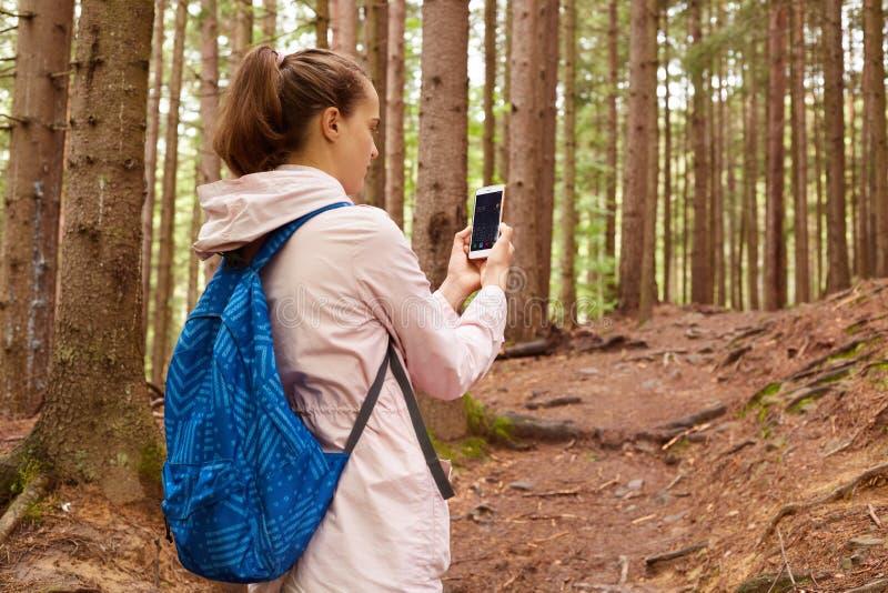 Profiel van wandelaarvrouw het wandelen in bos, omhoog lopend helling, houdend smartphone in beide handen, die het aanzetten, het royalty-vrije stock foto