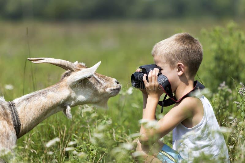Profielportret van jonge blonde leuke knappe kindjongen die beeld van grappige nieuwsgierige geit nemen die rechtstreeks in camer royalty-vrije stock afbeelding