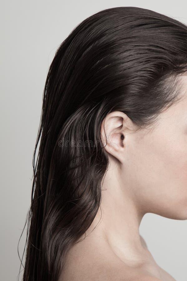 Profil över unga kvinnor med ett långt naturområde med mörkt vått hår royaltyfri foto