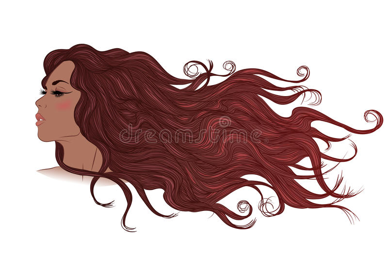 Profil av afrikansk amerikanflickan med flödande länge brunt hår royaltyfri illustrationer