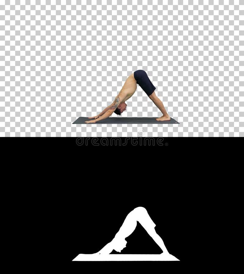 Profil av den muskulösa stiliga unga mannen som utarbetar som uppåt står i yoga, nedåtriktat - den belägen mitt emot hunden poser royaltyfri fotografi