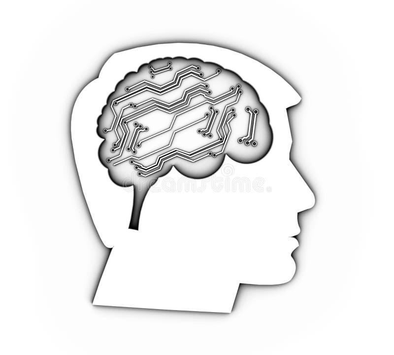 Profil av ett mänskligt huvud med hjärnan, illustration 3d royaltyfri bild