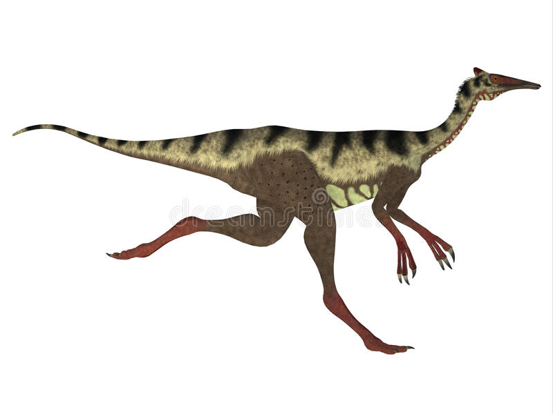 Profil de côté de Pelecanimimus illustration stock