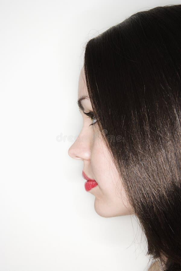 Profil de femme de Brunette. image libre de droits