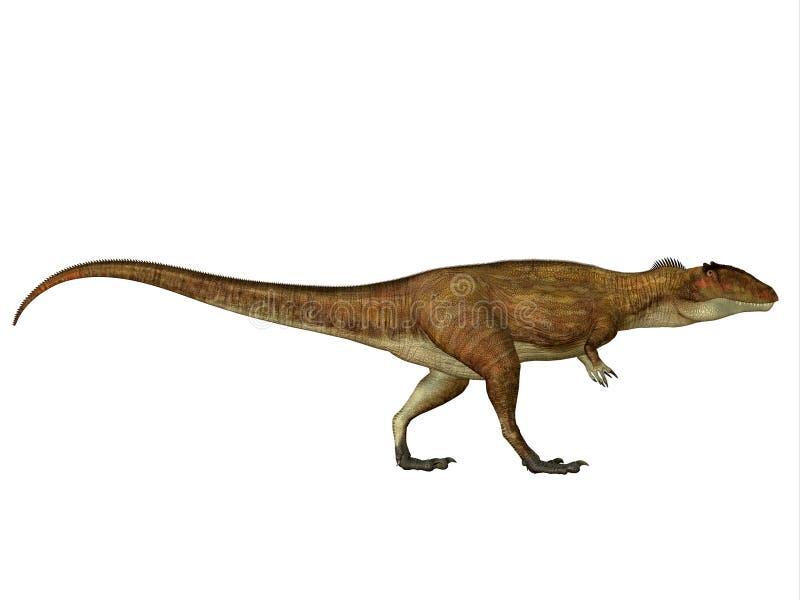 Profil latéral de Carcharodontosaurus illustration stock