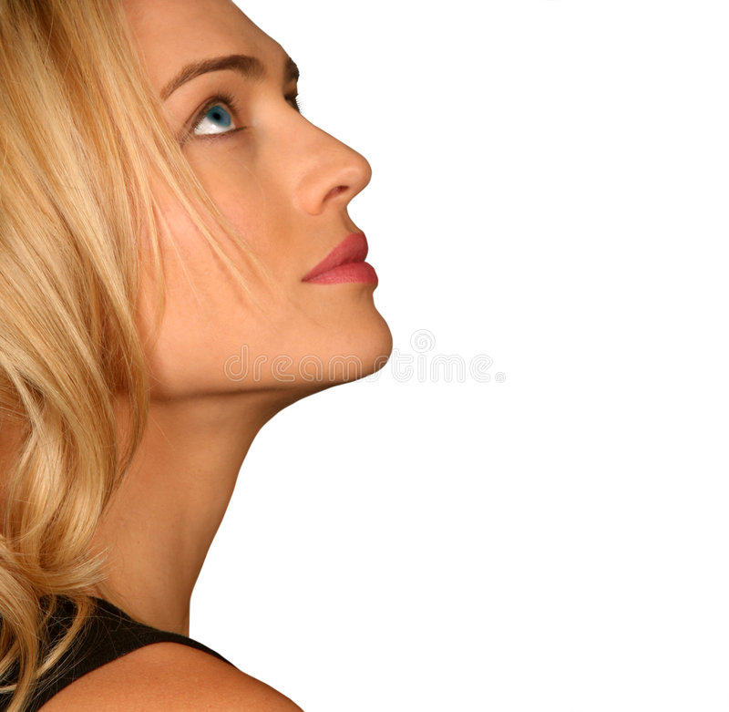 Download Profile Of A Beautiful Woman Stock Image - Image: 3064335
