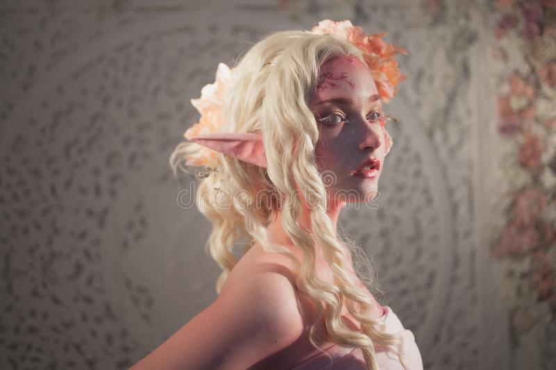 Profile of girl elf. Fantasy and fairy tale, computer games. Mysterious fairy stock photography