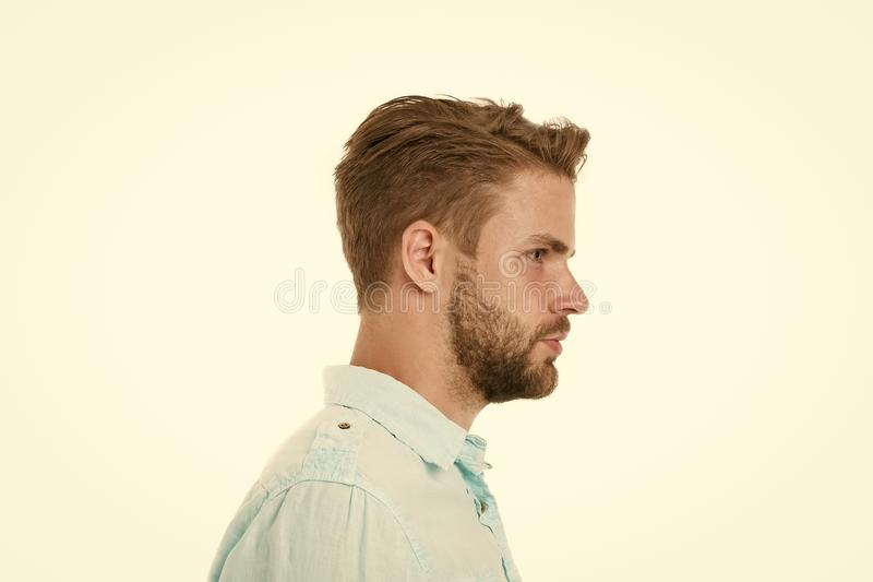 Profile of man with beard on unshaven face isolated on white background. Handsome man in blue shirt, fashion. Bearded royalty free stock photo
