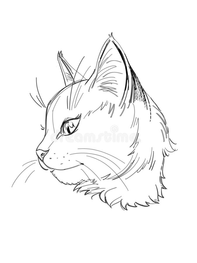 Free Profile Of A Cat Graphic Icon Stock Images - 135822854