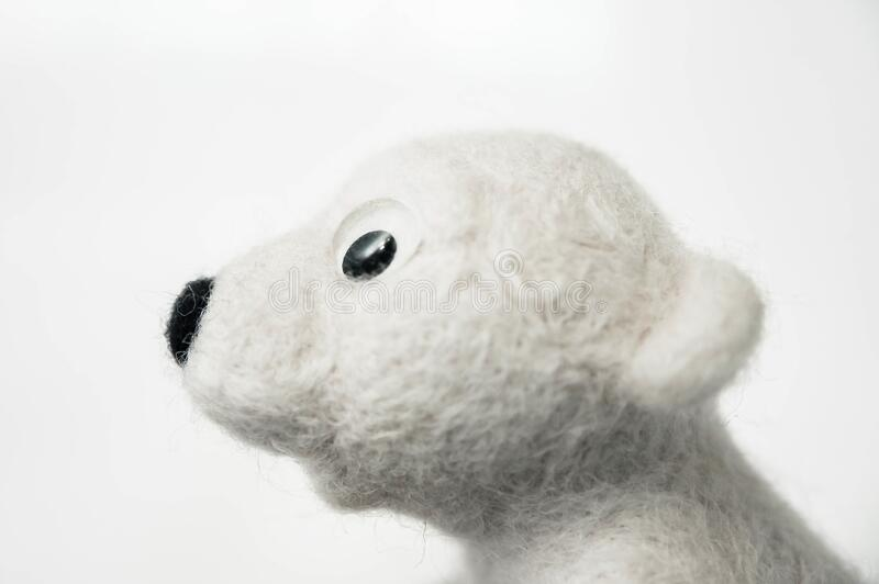 Profile portrait of toy polar bear made of felted wool on white background. A profile portrait of toy polar bear made of felted wool on white background royalty free stock images