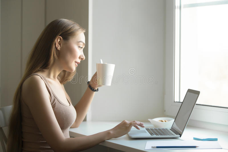Profile portrait of a woman with laptop on window sill. Profile portrait of a young attractive woman in a casual wear working at the with a laptop on the window royalty free stock image