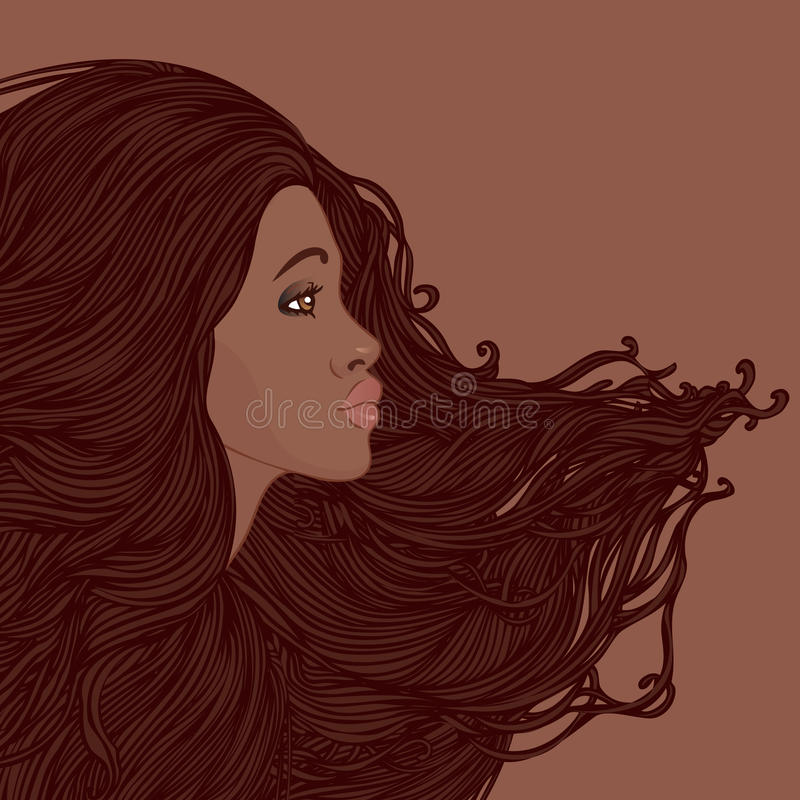 Profile of pretty young african american woman. Beauty Salon Set: Profile of pretty young african american woman with beautiful long hair. Vector illustration stock illustration