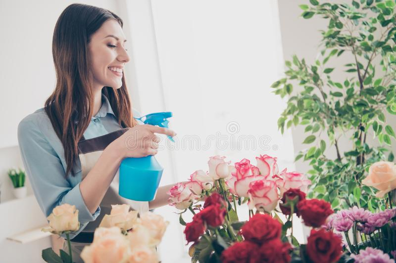 Profile side view photo of cute charming nice lady people hold hand look feel content dressed blue stylish trendy shirt. Profile side view photo of cute charming royalty free stock image