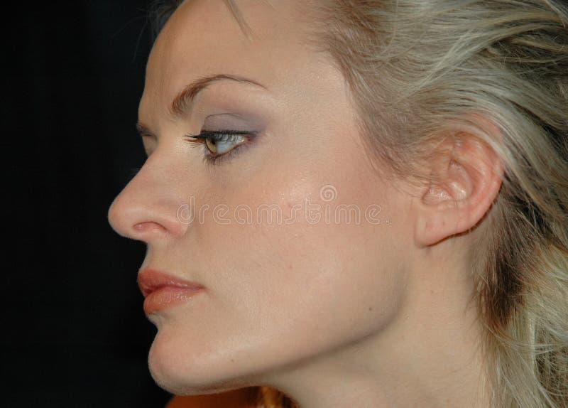 Profile2 imagen de archivo