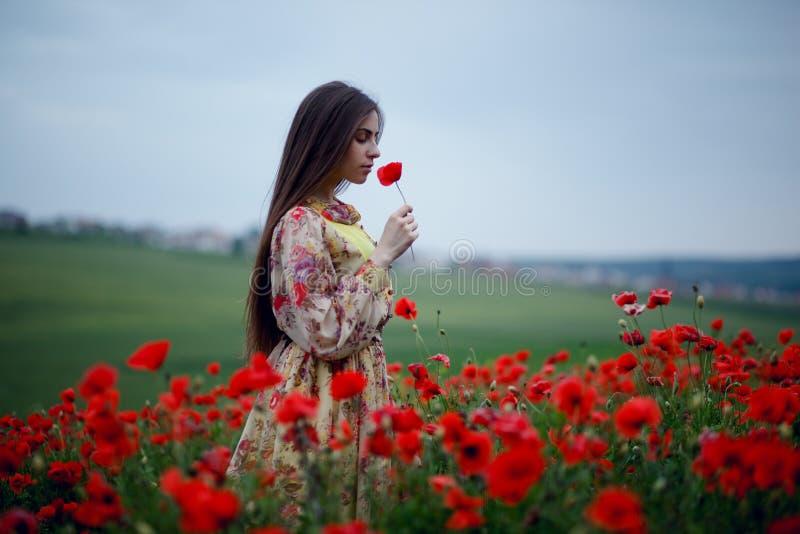Profilen av en härlig lång haired flicka i en delikat blom- klänning mot efterkrav och luktar vallmo i fältet royaltyfri foto