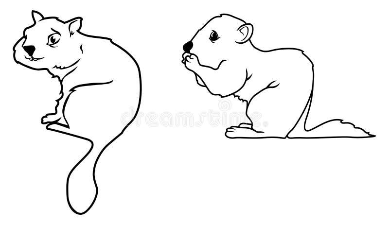 Profili del Chipmunk illustrazione vettoriale