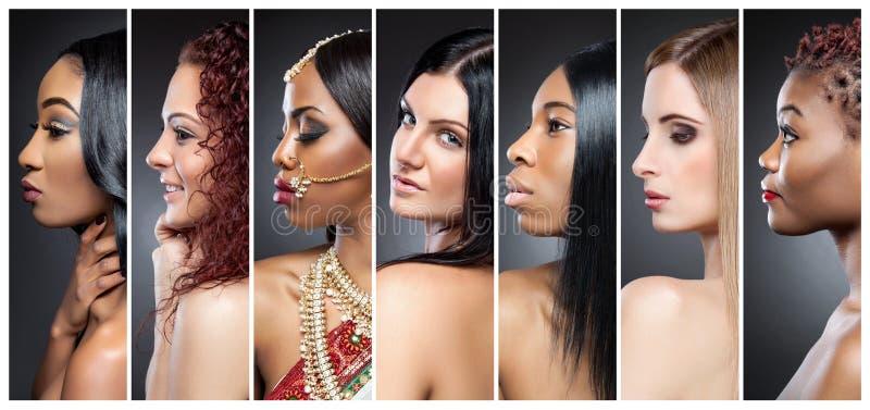 Profili il collage di vista delle donne multiple con i vari incarnati fotografia stock libera da diritti
