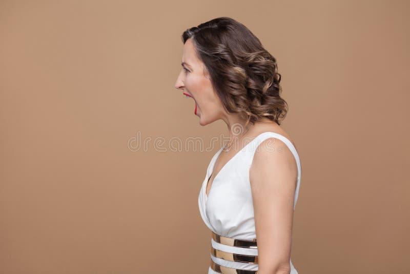 Profili il lato della donna arrabbiata del capo con i pms fotografie stock libere da diritti