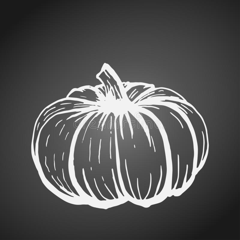 Profilo bianco della zucca disegnata a mano sulla lavagna grigia illustrazione vettoriale